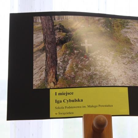 XI edycja Powiatowego Konkursu Fotograficznego rozstrzygnięta